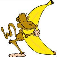 5 chú khỉ, 1 nải chuối và câu chuyện