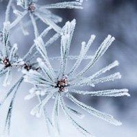 6 hiện tượng thiên nhiên tuyệt đẹp chỉ có vào mùa đông