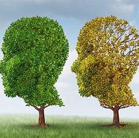 7 kỹ năng ghi nhớ giúp bạn có trí thông minh