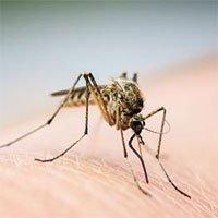 9 bệnh thường gặp vào mùa lũ và giải pháp khắc phục hiệu quả nhất