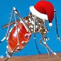 9 sự thật thú vị về loài muỗi