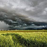 AI dự báo thời tiết chính xác thời gian thực