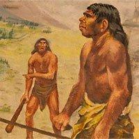 Bác bỏ vai trò gene FOXP2 trong tiến hóa ngôn ngữ của con người