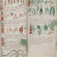 Bản thảo bí ẩn nhất thế giới cuối cùng đã được giải mã?