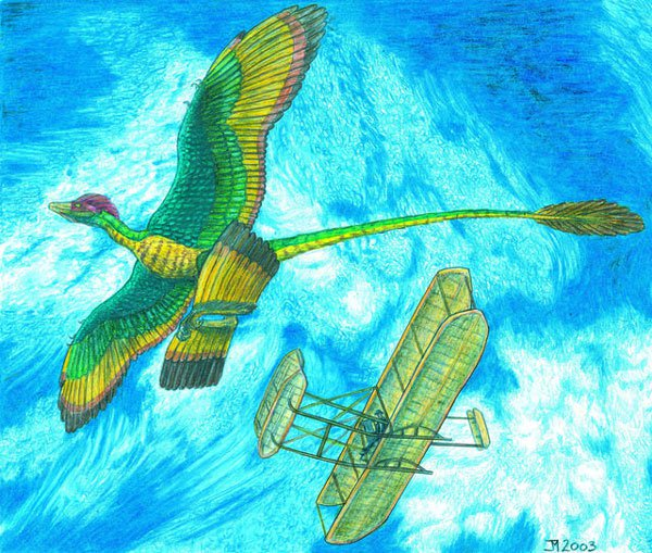 """Bằng chứng đầu tiên về khủng long """"bay"""" ăn thịt chim"""
