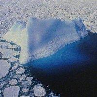 Băng Nam Cực có thể đã bắt đầu tan do El Nino từ những năm 1940