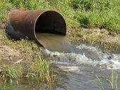 Băng vệ sinh giúp phát hiện nguồn nước ô nhiễm dễ dàng hơn