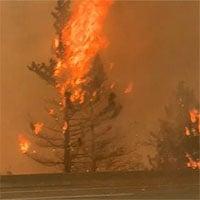 Bão lửa ở Canada gây ra 710.117 tia sét trong 15 giờ