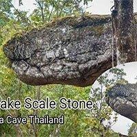 Bất ngờ phát hiện hang động hình rắn khổng lồ