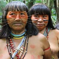Bên trong bộ lạc từng ăn thịt người thân để