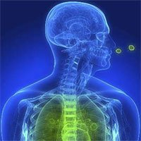 Bệnh viêm phổi: Nguyên nhân, triệu chứng và cách điều trị
