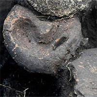 Bí ẩn 2 cặp nam nữ nằm úp lên nhau trong mộ cổ 5.000 năm