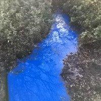 Bí ẩn dòng sông kỳ dị ở Anh: Nhà khoa học vẫn