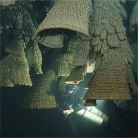 Bí ẩn hang động chứa đầy