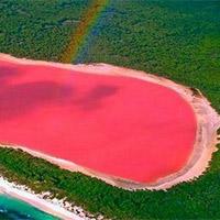 Bí ẩn hồ nước hồng ở Australia