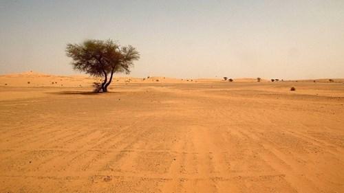 Biến đổi khí hậu mang mưa đến châu Phi