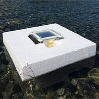 Biến nước biển thành nước ngọt với chi phí siêu rẻ