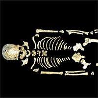 Bộ gene người cổ đại làm sáng tỏ lịch sử Đông Á