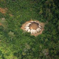 Bộ tộc sắp tuyệt chủng được phát hiện trong rừng Amazon