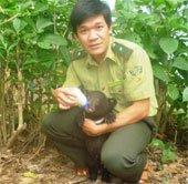 Bò tót, gấu ngựa xuất hiện tại rừng Thanh Hóa