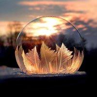Bong bóng đóng băng lung linh dưới ánh nắng