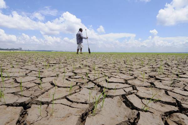 Brazil: Hạn hán nghiêm trọng nhất nửa thế kỷ qua