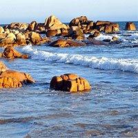 Bụi cổ đại trong đại dương có thể đã giúp thay đổi khí hậu Trái đất