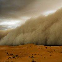 Bụi Sahara, kẻ