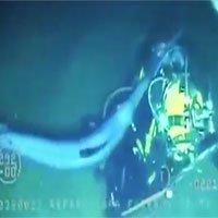 Cá kiếm hung tợn liên tiếp tấn công thợ lặn