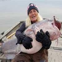 Cá nheo lục nặng 40kg cắn câu ngư dân Mỹ
