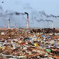 Các dạng ô nhiễm môi trường và cách khắc phục hiệu quả
