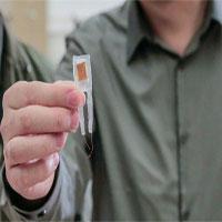Các nhà khoa học tạo ra chip giúp kiểm soát cân nặng