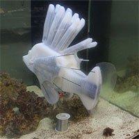 Các nhà khoa học vừa tạo ra robot cá chạy bằng