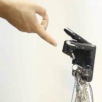 Các nhà nghiên cứu tạo ra bàn tay robot linh hoạt như tay người