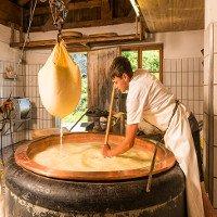 Cách người Anh sản xuất phô mai béo ngậy ít ai biết