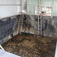 Cách phòng ngừa ngạt khí độc từ hầm chứa cá