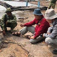 Campuchia phát hiện xương hóa thạch từ thời đại khủng long