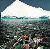 Canada: Khai thác nước sạch từ núi băng trôi