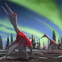 Canada phát hiện ra loài khủng long bay mới, có kích thước tương đương một chiếc máy bay nhỏ