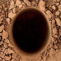Cảnh báo nguy cơ lây nhiễm các mầm bệnh ngoài Trái đất