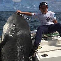 """Cậu bé 8 tuổi câu được cá mập hổ """"khủng"""" 300kg, phá kỷ lục thế giới suốt 22 năm"""