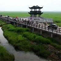 Cầu tre dài nhất thế giới, làm từ 66.000 tấm ván tre