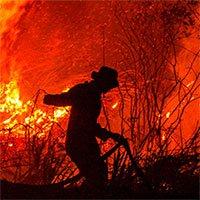 Cháy rừng Indonesia đang phủ đen bầu trời các nước Đông Nam Á