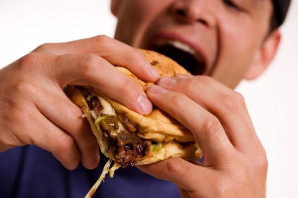 Chế độ ăn nhiều béo dẫn tới ngu đần và lười biếng?