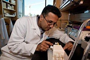 Chế tạo thành công thận nhân tạo có thể cấy ghép