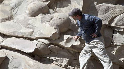 """Chechnya tuyên bố tìm thấy trứng khủng long """"khủng"""" nhất thế giới"""