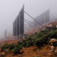 """Chiếc lưới đặc biệt giúp """"câu"""" nước từ không khí để giải quyết nạn hạn hán"""