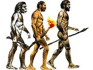 Chứng minh tổ tiên loài người có nguồn gốc châu Á