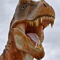 Chúng ta đã lầm về màu da của khủng long