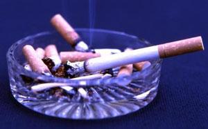 Chuột mẹ nhiễm nicotine, chuột con giảm nhận thức